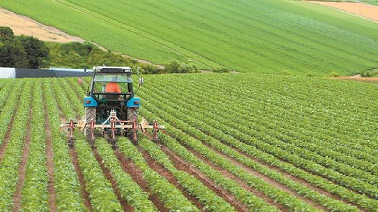 Αγροτικές Ειδήσεις: Υπόδειγμα καταστατικού αγροτικού συνεταιρισμού | agrocapital.gr