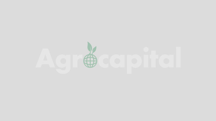 Agreement: Corteva Agriscience and Dadelos Agrosolutions